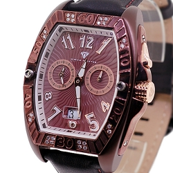 Aqua Master Aluminium 0.50 ct Diamond Mens Brown Watch
