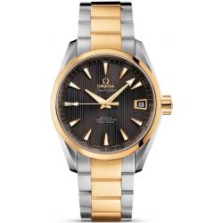 Omega Aqua Terra Chronometer Mens Watch 231.20.39.21.06.002