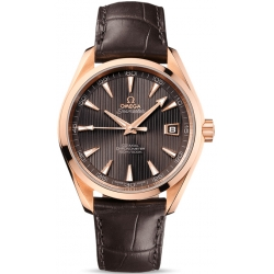 Omega Seamaster Aqua Terra Mens Gold Watch 231.53.42.21.06.001